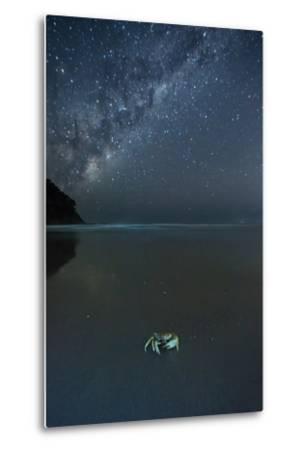 The Milky Way Above a Crab on a Beach-Alex Saberi-Metal Print