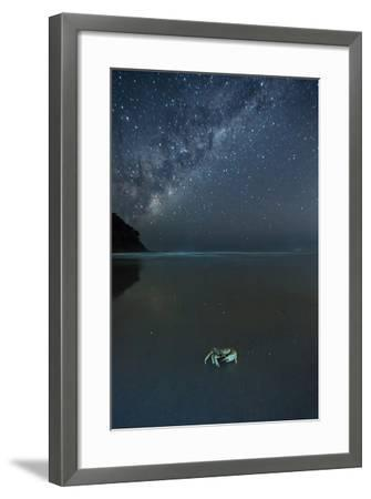 The Milky Way Above a Crab on a Beach-Alex Saberi-Framed Photographic Print