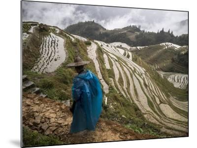 Longji Rice Terraces in China's Guangxi Province-Tino Soriano-Mounted Photographic Print