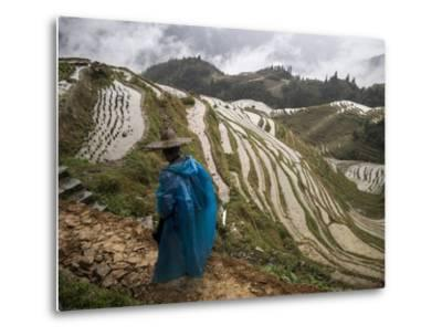 Longji Rice Terraces in China's Guangxi Province-Tino Soriano-Metal Print