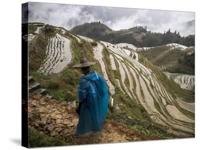 Longji Rice Terraces in China's Guangxi Province-Tino Soriano-Stretched Canvas Print