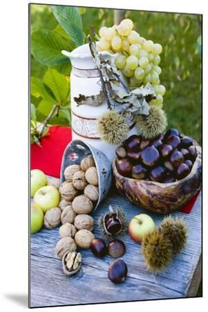 Grapes, Sweet Chestnuts, Apples and Nuts-Eising Studio - Food Photo and Video-Mounted Photographic Print