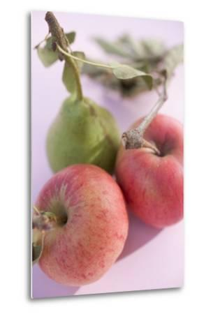 Pear and Two Apples with Stalks and Leaves (Overhead View)-Foodcollection-Metal Print