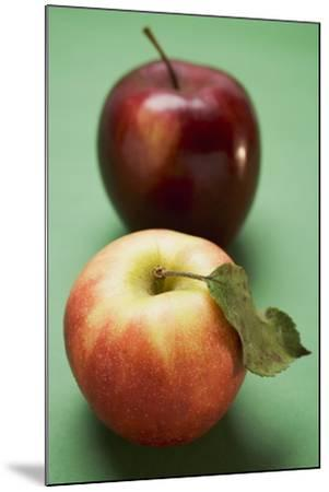 Two Different Apples (Varieties Elstar and Stark)-Foodcollection-Mounted Photographic Print