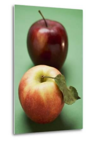 Two Different Apples (Varieties Elstar and Stark)-Foodcollection-Metal Print