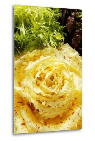 Assorted Salad Leaves with Yellow Radicchio-Foodcollection-Metal Print