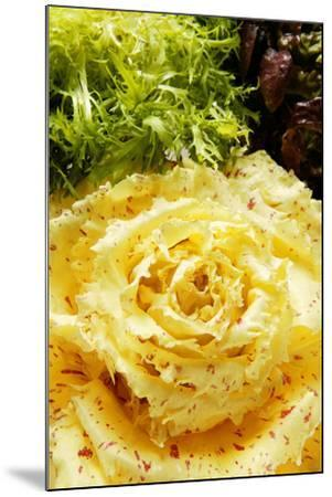 Assorted Salad Leaves with Yellow Radicchio-Foodcollection-Mounted Photographic Print