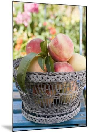 Basket of Fresh Peaches on a Garden Table-Eising Studio - Food Photo and Video-Mounted Photographic Print
