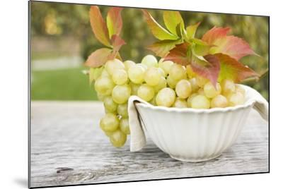 Green Grapes and Autumn Leaves in White Bowl-Foodcollection-Mounted Photographic Print