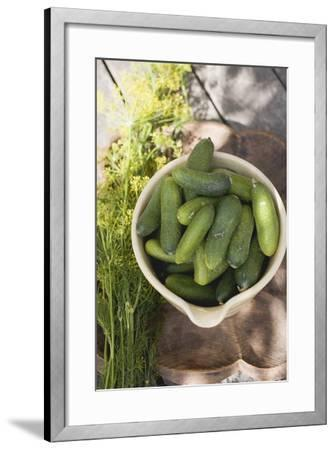 Pickling Cucumbers in Bowl, Fresh Dill Beside It-Foodcollection-Framed Photographic Print