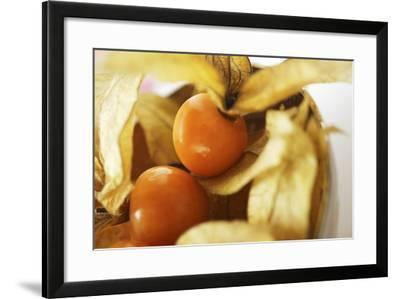 Physalis with Calyxes in a Bowl-Foodcollection-Framed Photographic Print