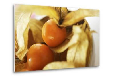 Physalis with Calyxes in a Bowl-Foodcollection-Metal Print