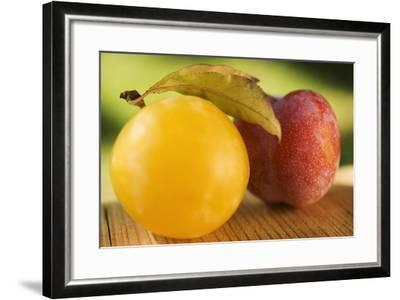 Yellow Plum with Leaves and Red Plum-Foodcollection-Framed Photographic Print