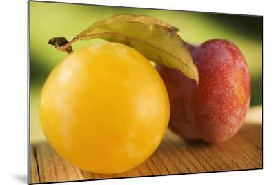 Yellow Plum with Leaves and Red Plum-Foodcollection-Mounted Photographic Print