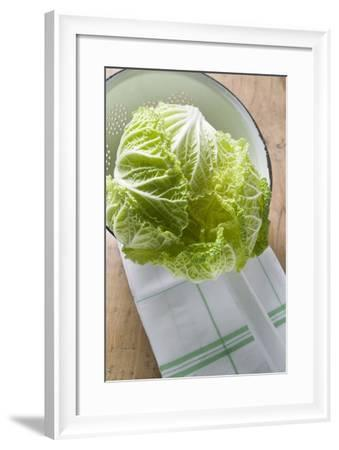 Fresh Chinese Cabbage in Colander-Foodcollection-Framed Photographic Print
