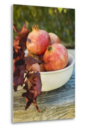Pomegranates in Bowl with Autumn Leaves-Foodcollection-Metal Print