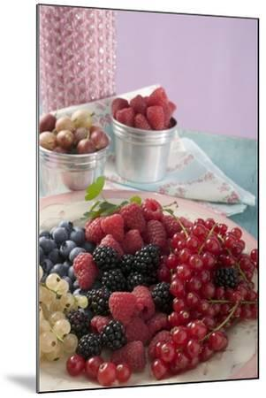 Mixed Berries on a Plate-Foodcollection-Mounted Photographic Print