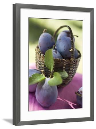 Fresh Plums in a Basket-Eising Studio - Food Photo and Video-Framed Photographic Print