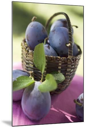 Fresh Plums in a Basket-Eising Studio - Food Photo and Video-Mounted Photographic Print