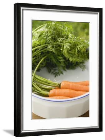 Fresh Carrots with Tops in White Dish-Foodcollection-Framed Photographic Print