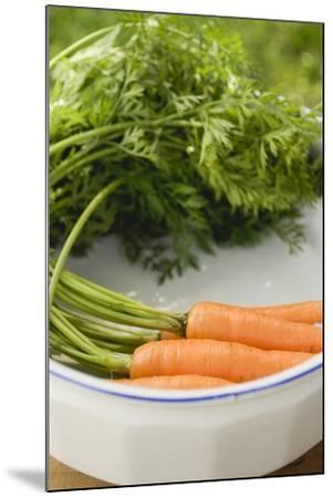 Fresh Carrots with Tops in White Dish-Foodcollection-Mounted Photographic Print