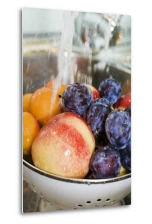 Washing, Plums, Peaches and Apricots-Eising Studio - Food Photo and Video-Metal Print