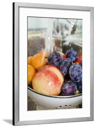 Washing, Plums, Peaches and Apricots-Eising Studio - Food Photo and Video-Framed Photographic Print