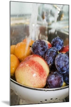 Washing, Plums, Peaches and Apricots-Eising Studio - Food Photo and Video-Mounted Photographic Print