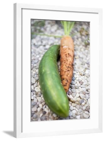 Braising Cucumber and Fresh Carrot-Foodcollection-Framed Photographic Print