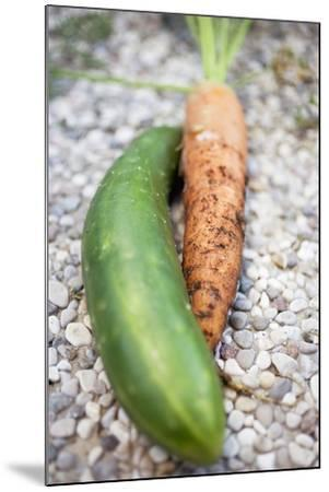 Braising Cucumber and Fresh Carrot-Foodcollection-Mounted Photographic Print