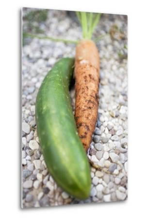 Braising Cucumber and Fresh Carrot-Foodcollection-Metal Print