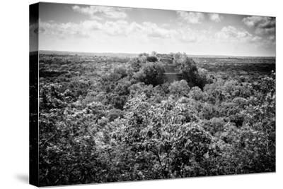 ?Viva Mexico! B&W Collection - Ruins of the ancient Mayan city of Calakmul-Philippe Hugonnard-Stretched Canvas Print