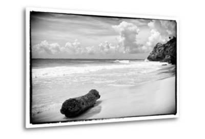 ?Viva Mexico! B&W Collection - Tree Trunk on a Caribbean Beach-Philippe Hugonnard-Metal Print