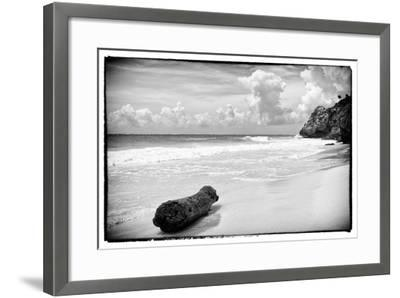 ?Viva Mexico! B&W Collection - Tree Trunk on a Caribbean Beach-Philippe Hugonnard-Framed Photographic Print