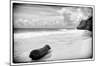 ?Viva Mexico! B&W Collection - Tree Trunk on a Caribbean Beach-Philippe Hugonnard-Mounted Photographic Print