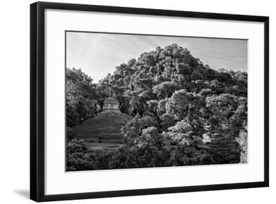 ?Viva Mexico! B&W Collection - Mayan Ruins in Palenque at Sunrise II-Philippe Hugonnard-Framed Photographic Print