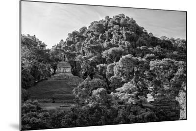 ?Viva Mexico! B&W Collection - Mayan Ruins in Palenque at Sunrise II-Philippe Hugonnard-Mounted Photographic Print