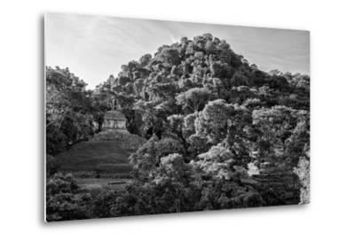 ?Viva Mexico! B&W Collection - Mayan Ruins in Palenque at Sunrise II-Philippe Hugonnard-Metal Print