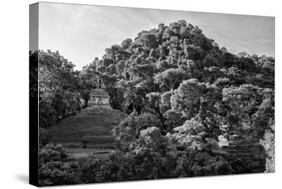 ?Viva Mexico! B&W Collection - Mayan Ruins in Palenque at Sunrise II-Philippe Hugonnard-Stretched Canvas Print