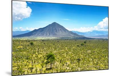 ?Viva Mexico! Collection - Desert Landscape in Puebla-Philippe Hugonnard-Mounted Photographic Print
