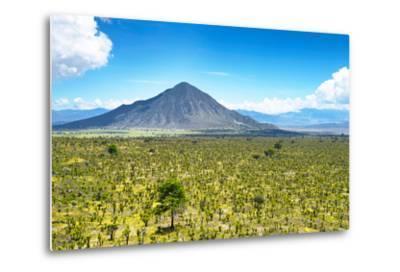 ?Viva Mexico! Collection - Desert Landscape in Puebla-Philippe Hugonnard-Metal Print