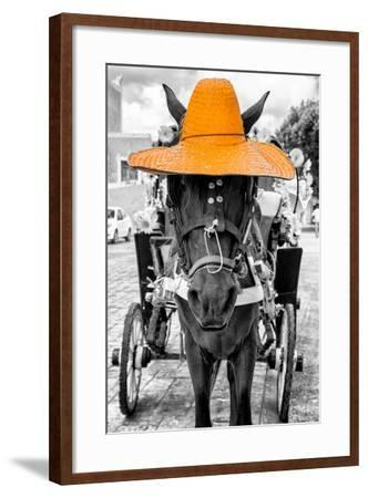 ¡Viva Mexico! B&W Collection - Horse with Light Orange straw Hat-Philippe Hugonnard-Framed Photographic Print