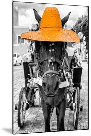 ¡Viva Mexico! B&W Collection - Horse with Light Orange straw Hat-Philippe Hugonnard-Mounted Photographic Print