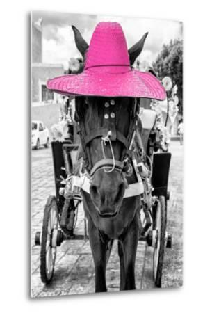 ¡Viva Mexico! B&W Collection - Horse with Pink straw Hat-Philippe Hugonnard-Metal Print