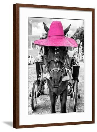 ¡Viva Mexico! B&W Collection - Horse with Pink straw Hat-Philippe Hugonnard-Framed Photographic Print