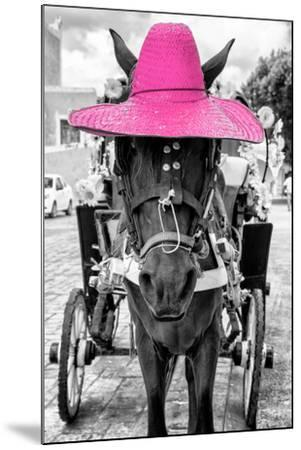 ¡Viva Mexico! B&W Collection - Horse with Pink straw Hat-Philippe Hugonnard-Mounted Photographic Print