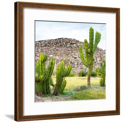 ¡Viva Mexico! Square Collection - Mexican Cactus II-Philippe Hugonnard-Framed Photographic Print