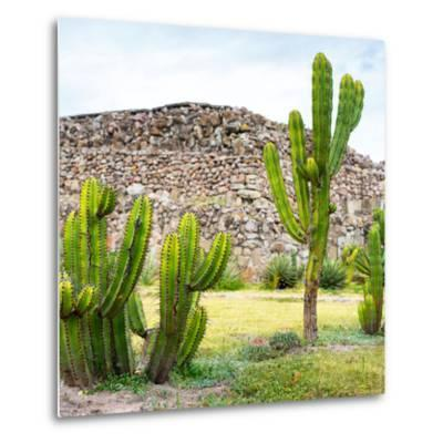 ¡Viva Mexico! Square Collection - Mexican Cactus II-Philippe Hugonnard-Metal Print