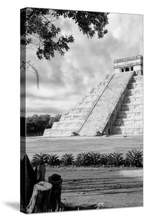 ?Viva Mexico! B&W Collection - Chichen Itza Pyramid IV-Philippe Hugonnard-Stretched Canvas Print