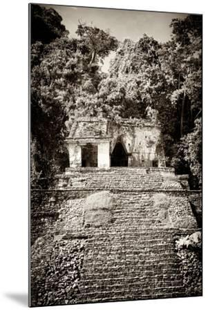 ¡Viva Mexico! B&W Collection - Mayan Ruins in Palenque III-Philippe Hugonnard-Mounted Photographic Print